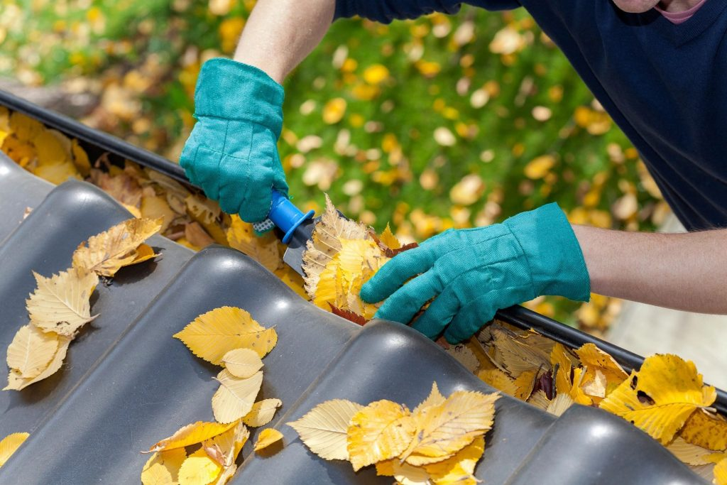 A person cleaning leaves out of a roof gutter with a gardening shovel