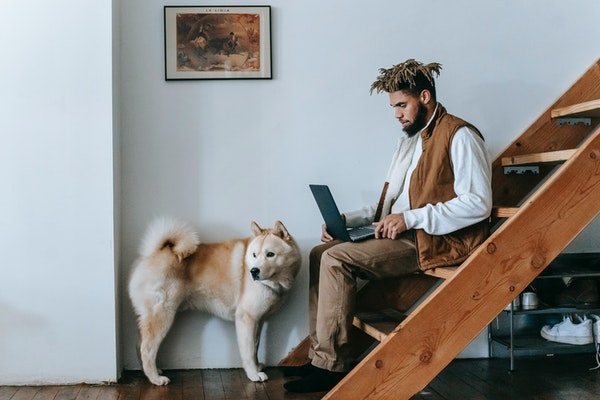 Man sitting on stairs by his dog and working on a laptop