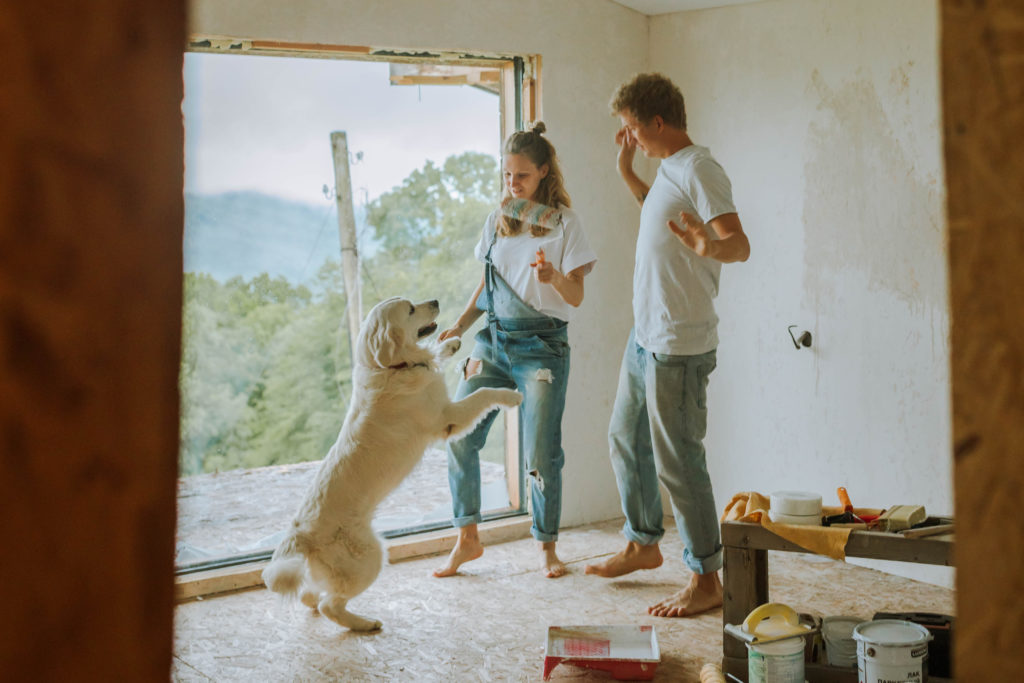 Male and female couple renovating a house while golden retriever dog jumps.