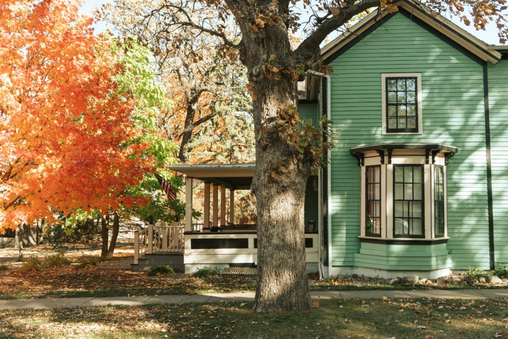 A green house sitting on a street lined with fall-colored trees.
